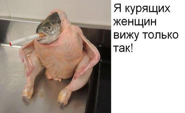 http://joke.sibnet.ru/file/file-67248.jpg